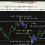 サトピーのFXトレード時間,2020年5月19日~末